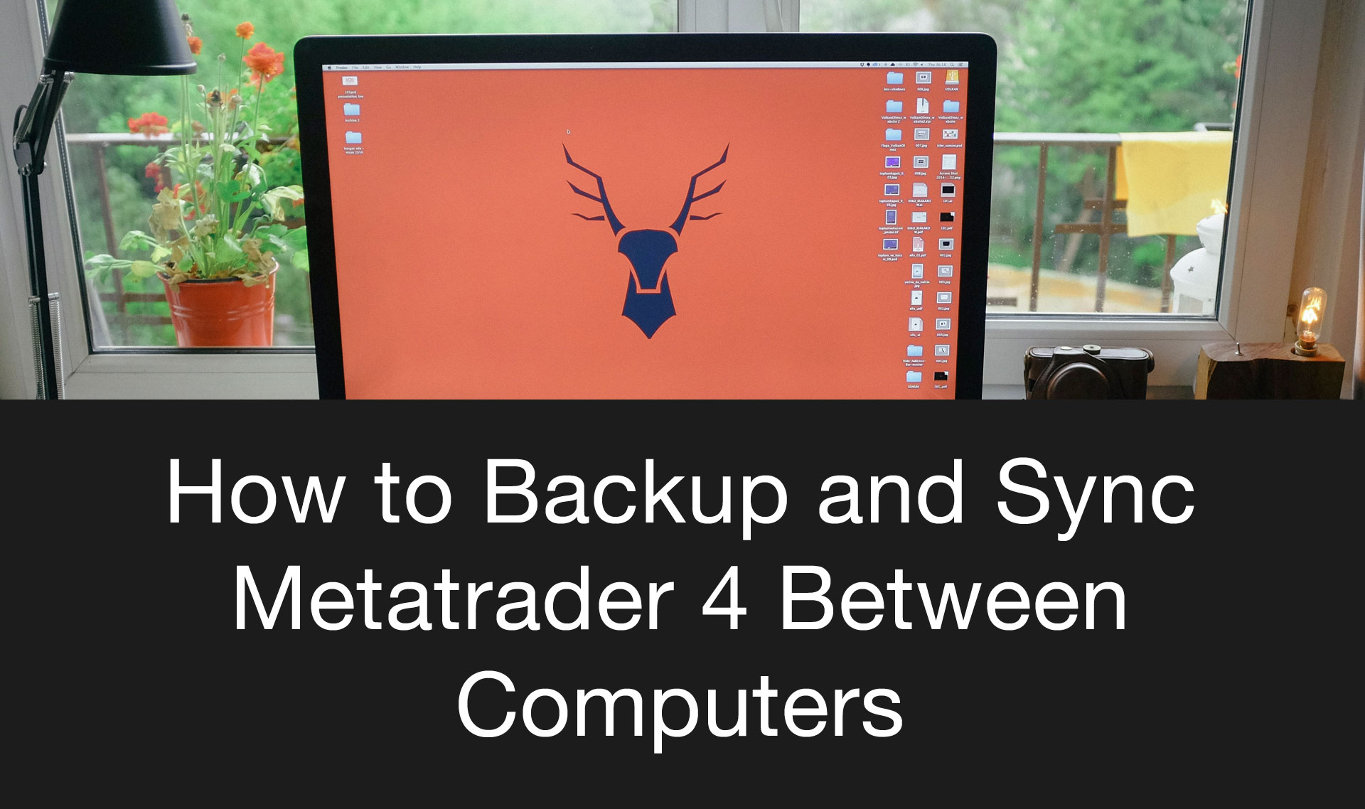 Backup and Sync MT4 with Dropbox