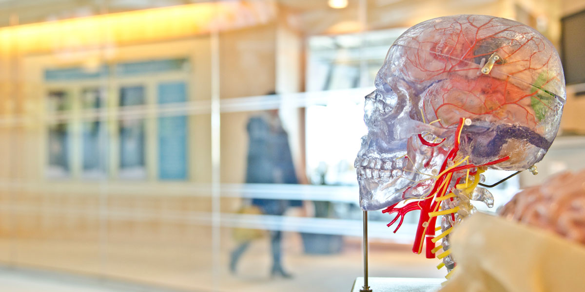 Emotion Code Brain