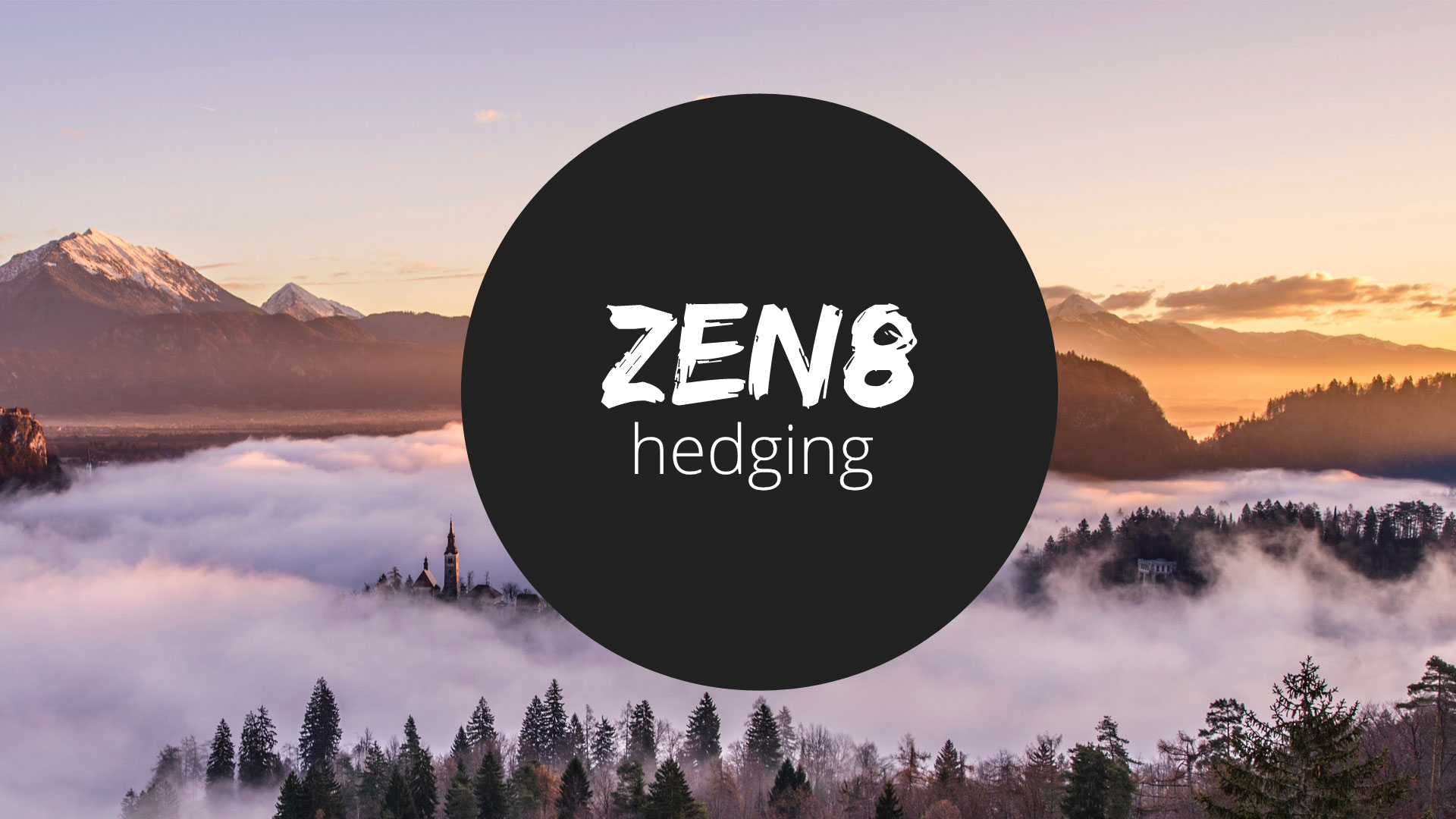 Zen8 Hedging